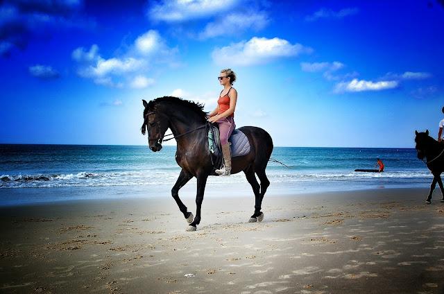http://www.lacostadecadiz.com/index.php/galerias-de-fotos/category/178-caballos-en-la-playa-de-los-lances
