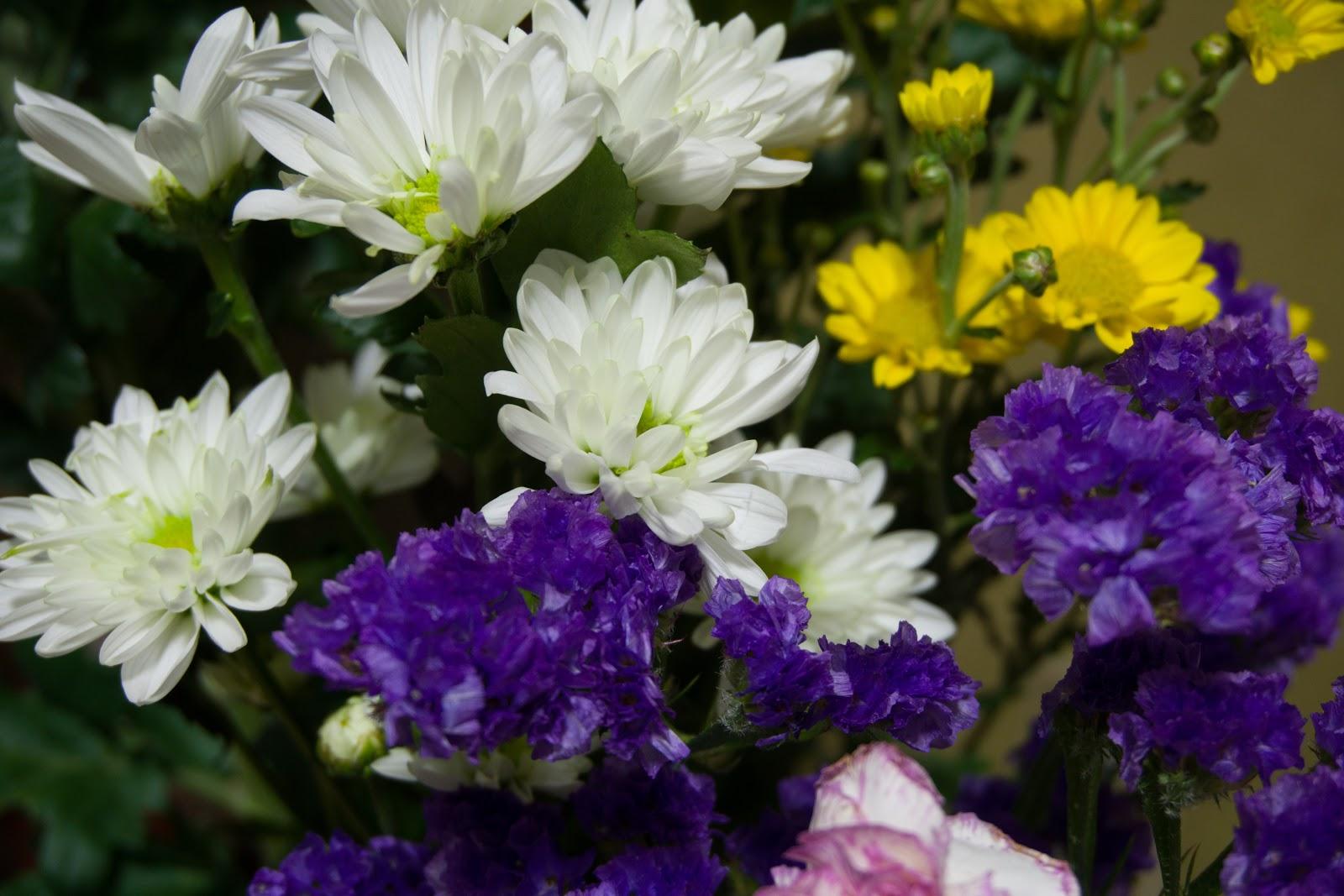 α5100とSELP1650の作例:室内の花瓶の白と紫と黄色の花々