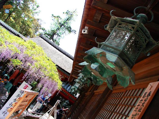 Kasuga Taisha - Nara - Japón