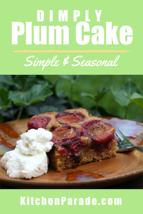 Dimply Plum Cake ♥ KitchenParade.com, a rustic cake topped with sweet Italian plums burrowed into a cardamom-sweet, citrus-scented batter. Recipe, tips, nutrition & WW points included.