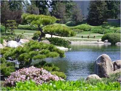 สวนญี่ปุ่น (Japanes Garden)