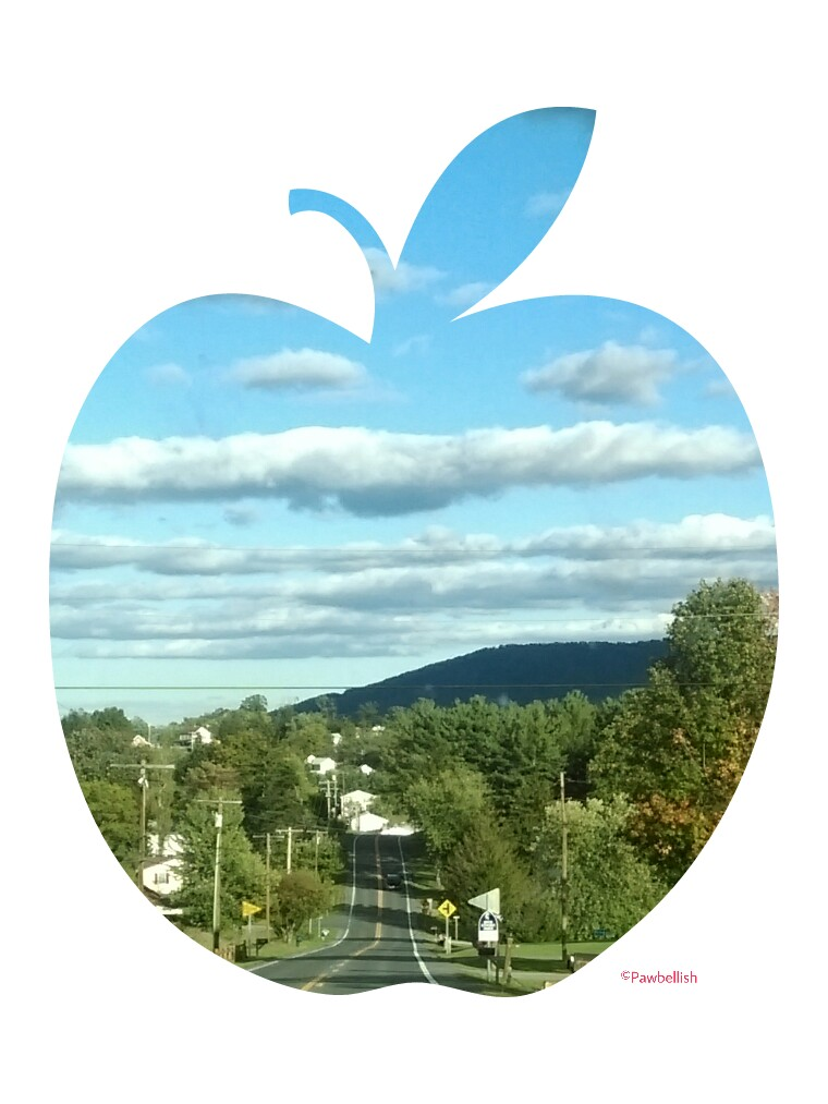 Road to the Dog Friendly Apple Butter Festival in Berkeley Springs, WV