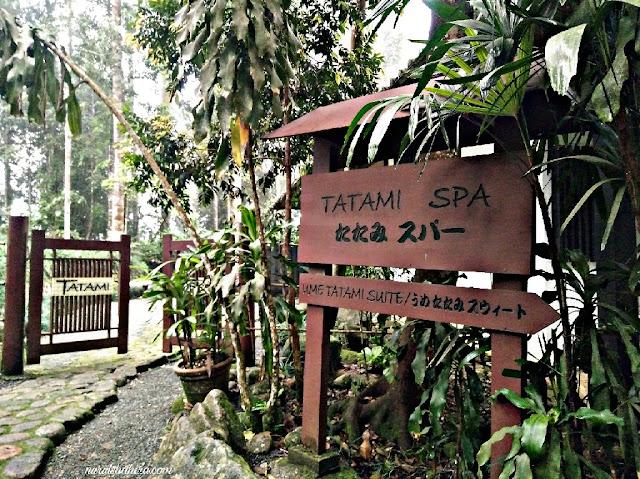 Colmare Tropicale Bukit Tinggi, Tempat menari di Bukit Tinggi, aktiviti menarik di bukit tinggi, Colmar Tropicale Resort, Waktu stage performance colmar tropicale, taman jepun bukit tinggi, japanese garden bukit tinggi, jjcm bukit tinggi pahang, menarik di bukit tinggi pahang