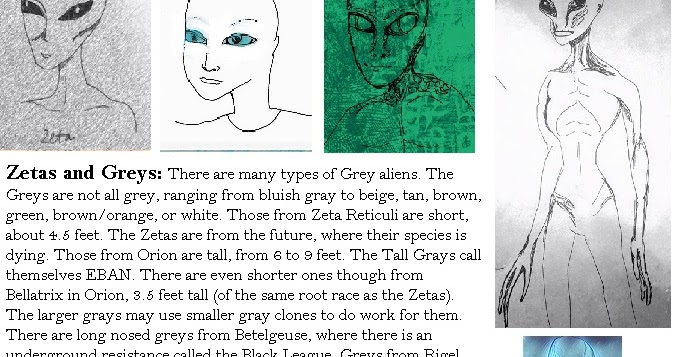 Greys and Zeta Soul Starseeds | Fixed Stars