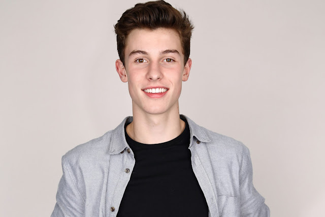 Lirik Lagu Shawn Mendes - Act Like You Love Me