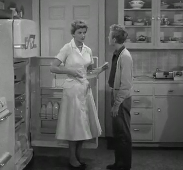 how did ward and june cleaver meet