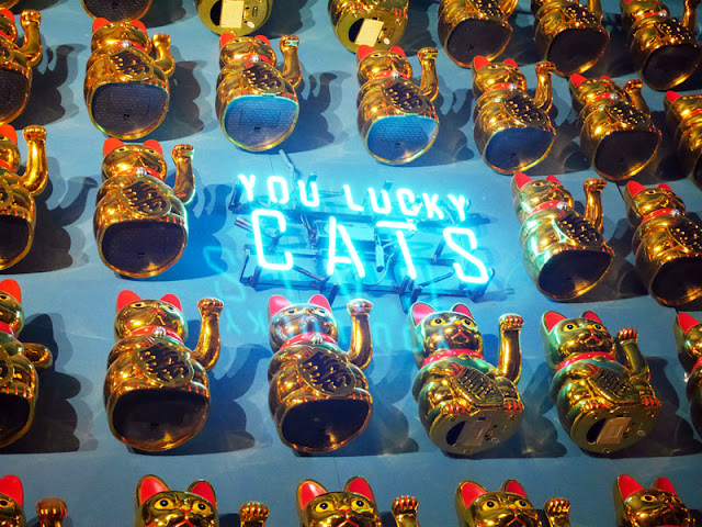 lucky cats at Holy Phok Vietnamese restaurant brighton