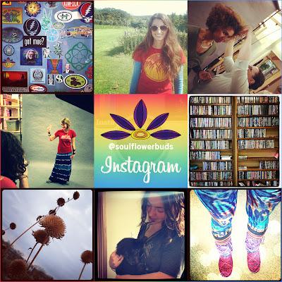 soul+flower instagram2 - Soul Flower on Instagram