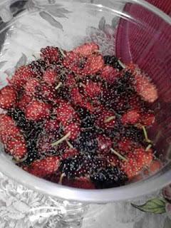 buah rasberi