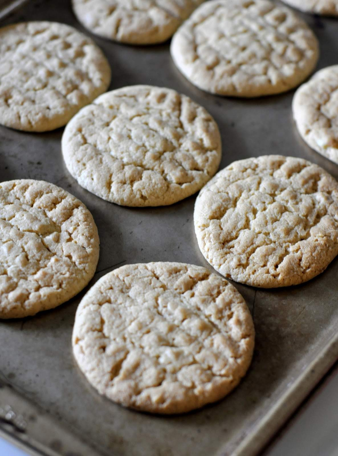 Crunchy-Peanut-Butter-Cookies-tasteasyougo.com