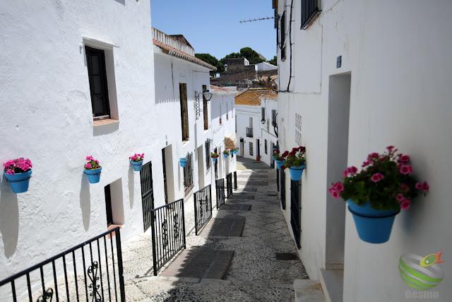 ミハスの村
