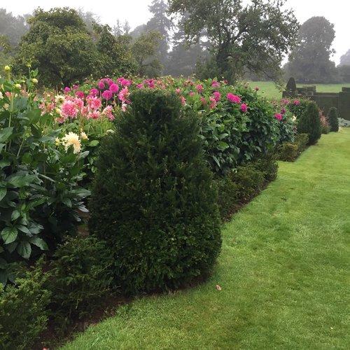 Passeggiare tra parchi giardini e castelli for Creazioni giardini