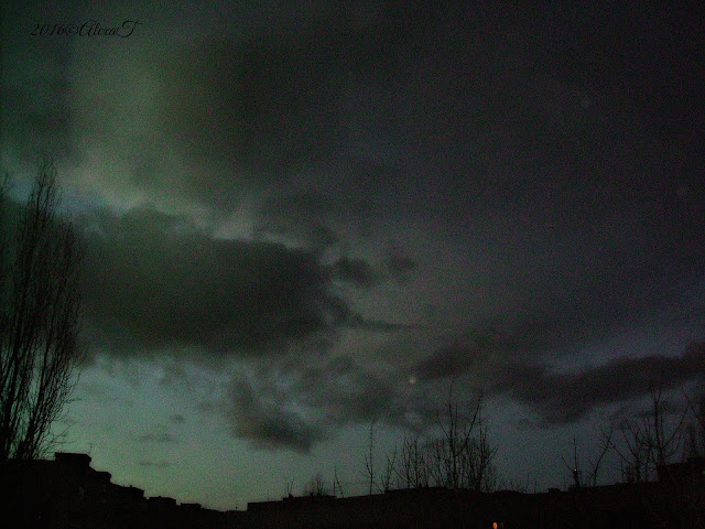 Skies, trees and clouds in december 3, 2016; view in the night.