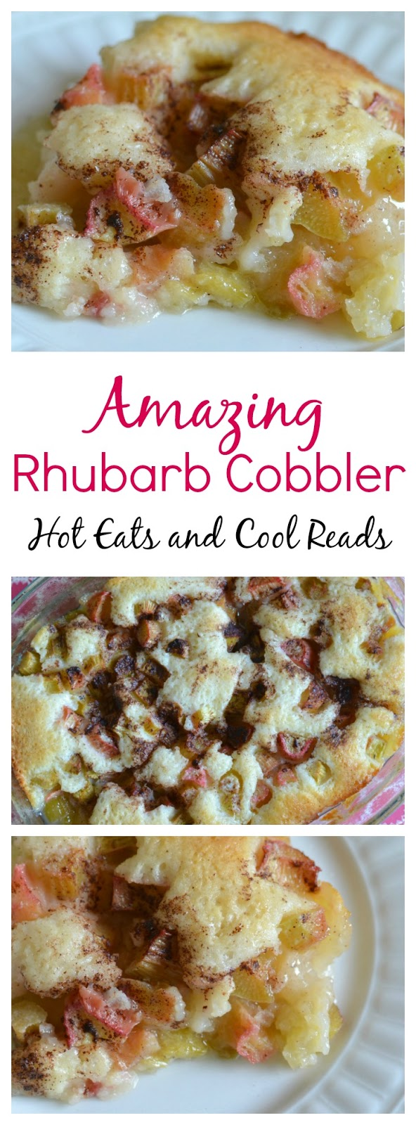 This lovely springtime dessert couldn't be any easier! Ready in less than an hour and so good with the sweet and tangy flavors! Amazing Rhubarb Cobbler Recipe from Hot Eats and Cool Reads