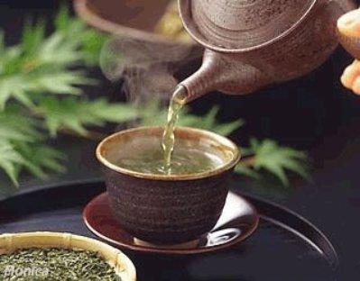 Propriedades do chá de oliveira para emagrecer