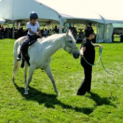 Verrill Farm Day Pony Rides Concord MA New England Fall Events