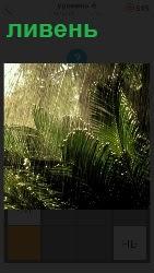 460 слов идет сильный ливень в тропиках 6 уровень