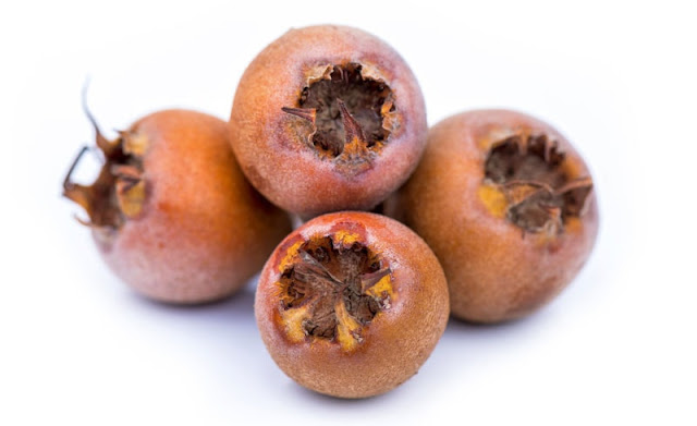 medlar fruit canistel fruit