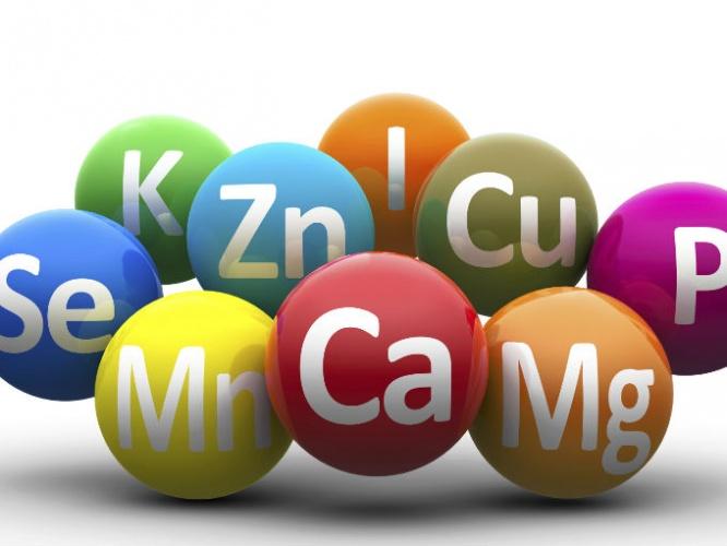 Vitamina, minerales y nutrimentos
