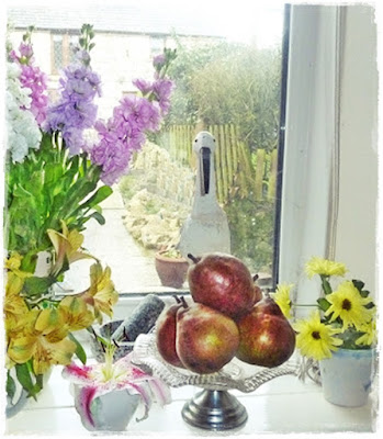 pears ripening on the windowsill