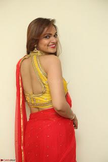 Actress Ashwini in Golden choli Red saree Spicy Pics ~  049.JPG