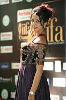 Sanjjanaa Galrani aka Archana Galrani in Maroon Gown beautiful Pics at IIFA Utsavam Awards 2017 35.JPG