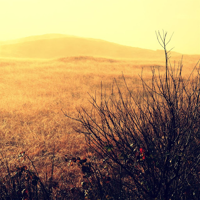 Another sun© Annie Japaud 2013, photography, nature, landscape, Connemara