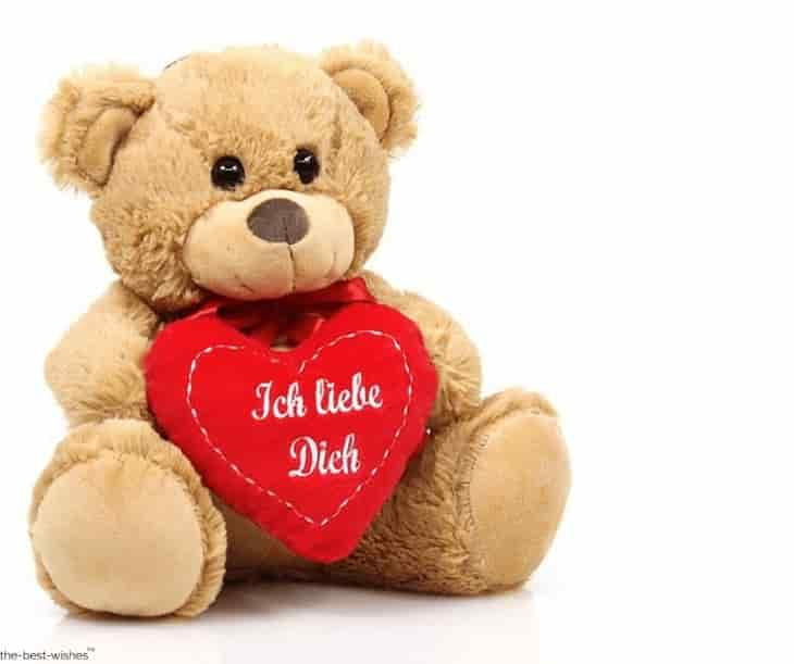 i love you with teddy bear