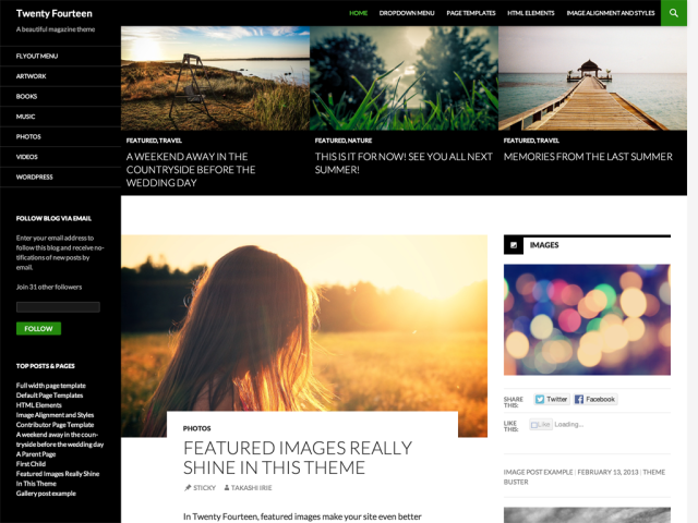 Twenty Fourteen - free blog WordPress theme