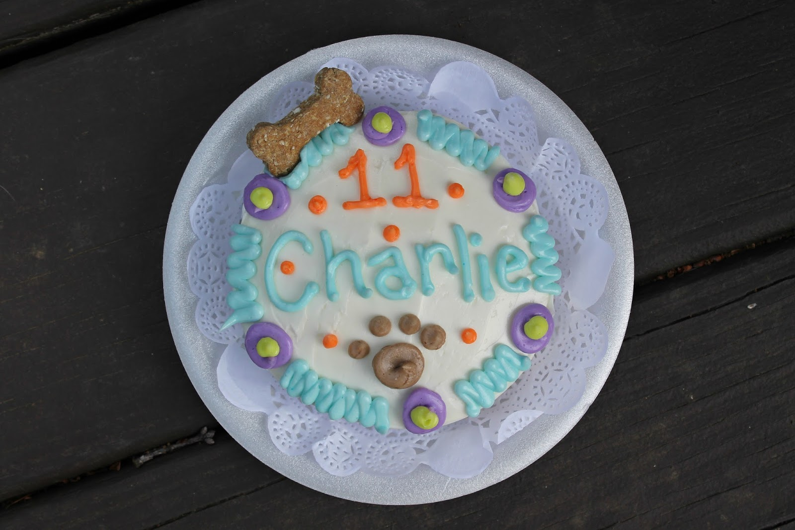 A Pawty Day || Charlie is 77