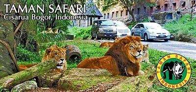 Harga Tiket Masuk Taman Safari Terbaru 2016