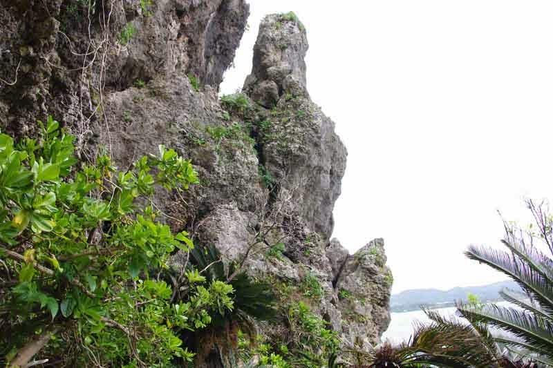 cliffs along path to ocean