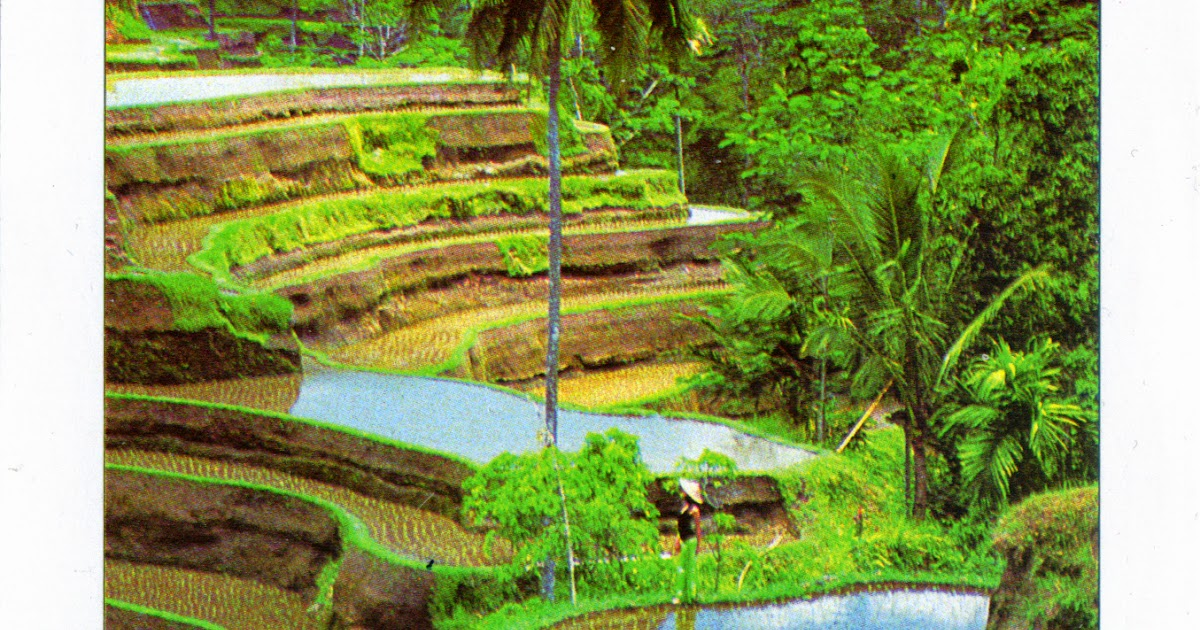 WORLD, COME TO MY HOME!: 1347 INDONESIA Lesser Sunda  Cultural Landscape of Bali Province