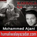 http://audionohay.blogspot.com/2014/10/muhammad-ajani-nohay-2015.html