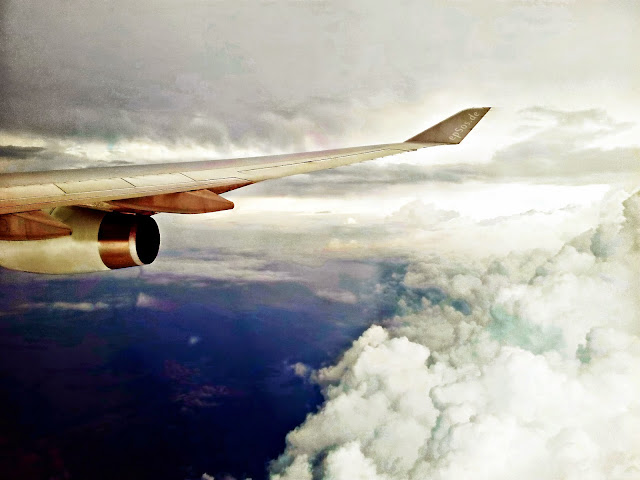 vacation plane wing
