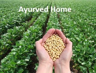 सोयाबीन की खेती कैसे करें | soyabin ki kheti kaise Karen