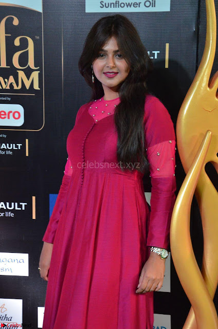 Monal Gajjar in Maroon Gown Stunning Cute Beauty at IIFA Utsavam Awards 2017i 001.JPG
