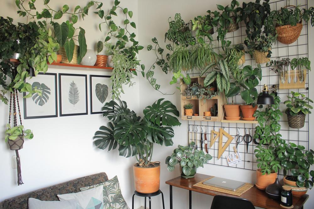 Entrevista a Jan (homebyfousna) conocemos a la persona que esta tras  uno de mis perfiles favoritos sobre plantas en Instagram