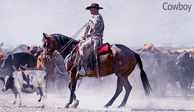 cowboy occupation
