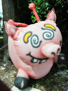 'A Porca' - Bonecos Infláveis, em Canela