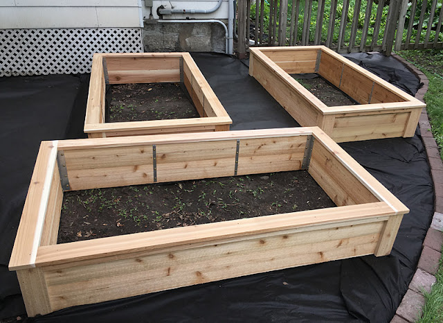 Western Red Cedar Architectural Classic Style Raised Beds For Vegetable Growing in Minneapolis Minnesota