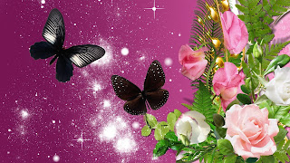 Wallpapers de Mariposas