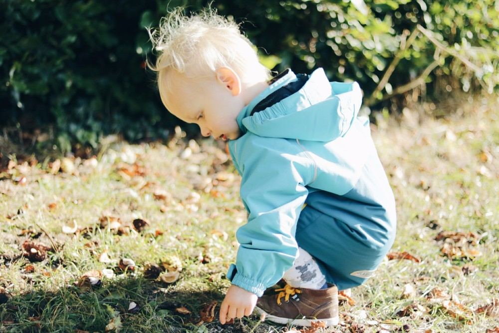 blonde-toddler-boy-wearing-blue-coat-crouching-on-grass-picking-up-conkers