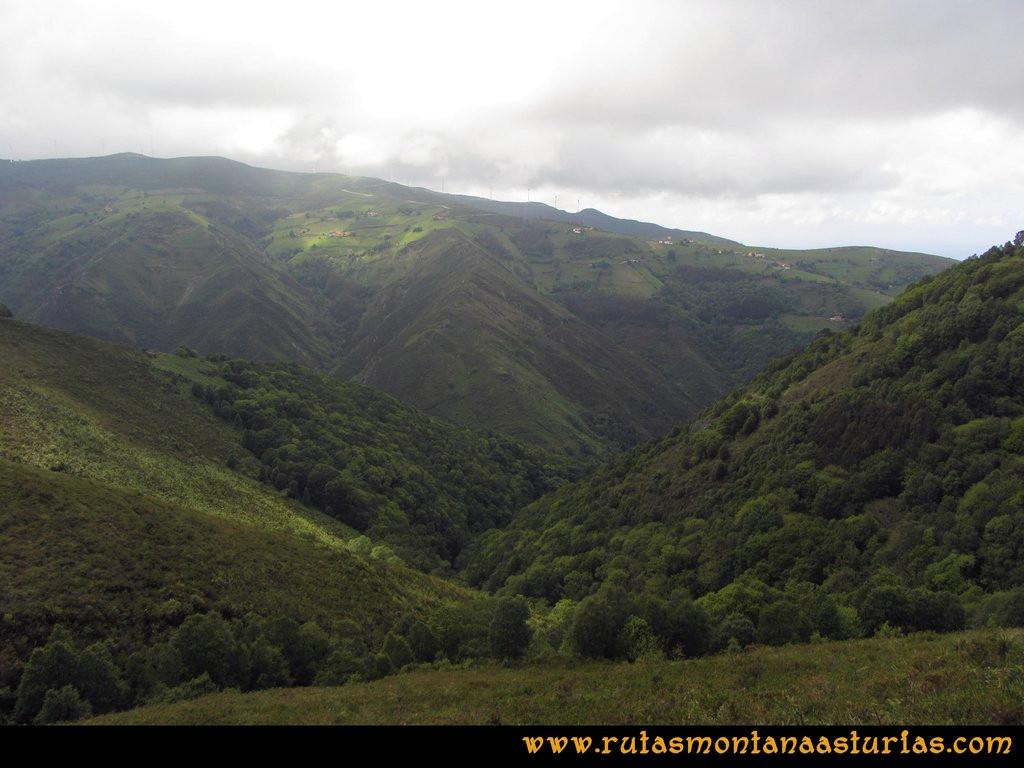 Ruta Llan de Cubel y Cueto: Valle con mucha vegetación