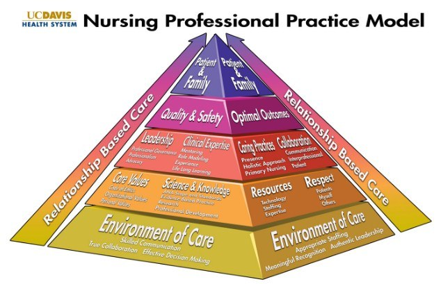 Model Praktek Keperawatan Profesional yang Wajib Diketahui Oleh Perawat