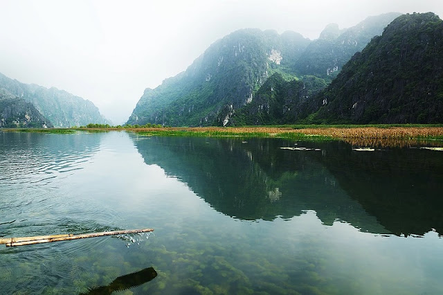 Van Long Nature Reserve - A highlight for Ninh Binh tourism