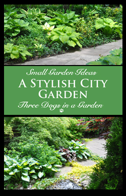 A Stylish City Garden