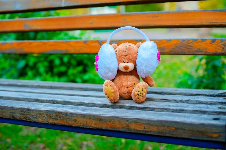 Teddy-in-park-listening-music-cute-image-for-desktop-1440x958.jpg