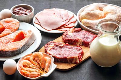 Makanan Yang Banyak Mengandung Protein Tinggi