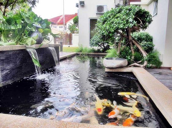 Desain Kolam Air Di Taman Rumah Minimalis